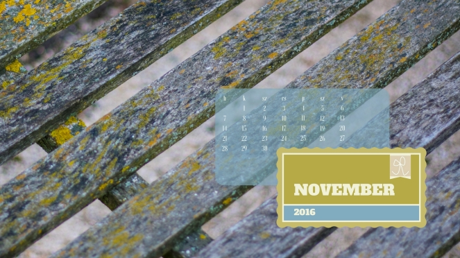 masni_november_169